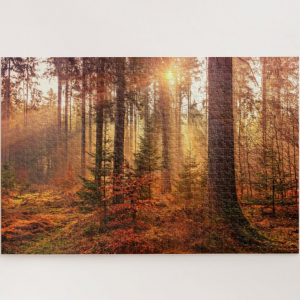 Autum Forest – 1000 piece jigsaw puzzle