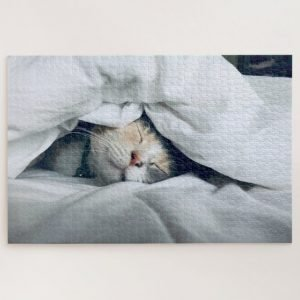 Cat under the Covers – 1000 piece jigsaw puzzle