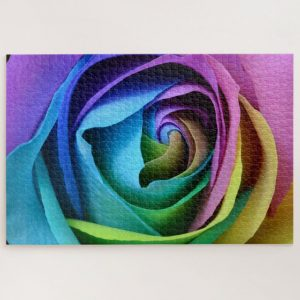 Close up of Multicoloured Roses – 1000 piece jigsaw puzzle