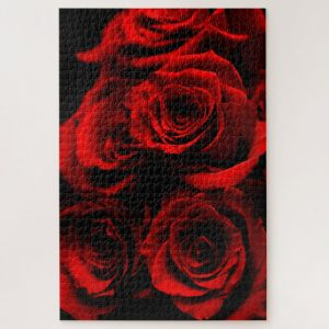 Closeup Red Roses – 1000 piece jigsaw puzzle