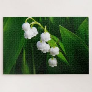 Closeup White lily of Valley Flowers – 1000 piece jigsaw puzzle