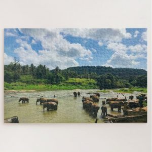 Elephant Herd – 1000 piece jigsaw puzzle