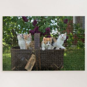 Kittens in Picnic Basket – 1000 piece jigsaw puzzle