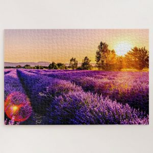 Lavender Field – 1000 piece jigsaw puzzle