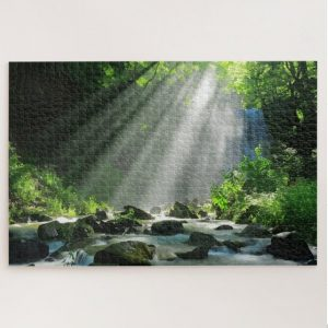 Light Burst through Forest Canopy – 1000 piece jigsaw puzzle