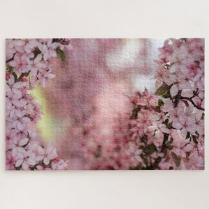 Looking through Pink Cherry Blossoms – 1000 piece jigsaw puzzle
