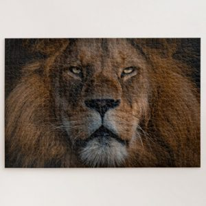 Mystifying Lion – 1000 piece jigsaw puzzle