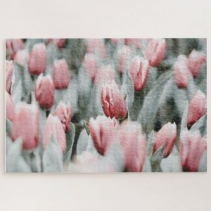 Pink Tulips – 1000 piece jigsaw puzzle