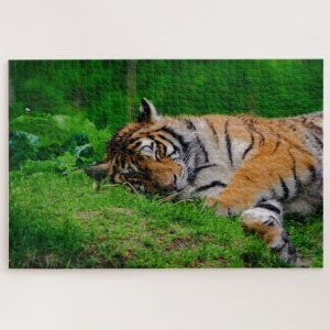 Sleeping Tiger – 1000 piece jigsaw puzzle