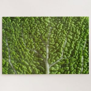 Vegetable Leaf Texture – 1000 piece jigsaw puzzle