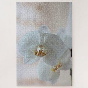 White Moth Orchid – 1000 piece jigsaw puzzle
