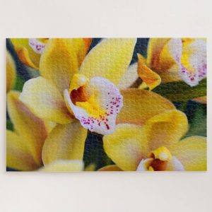 Yellow Boat Orchids – 1000 piece jigsaw puzzle